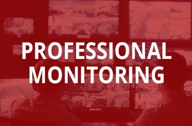 Professional security Monitoring